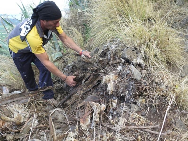 Tres operarios de la empresa Prored se encargan de realizar la limpieza de los accesos a la cueva. DA