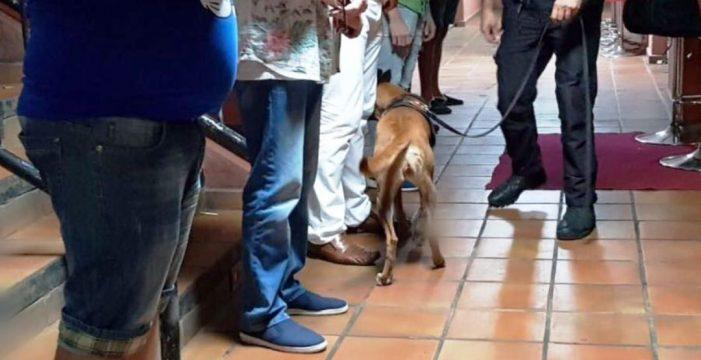 La Unidad Canina de Arona pilla a 20 personas con droga