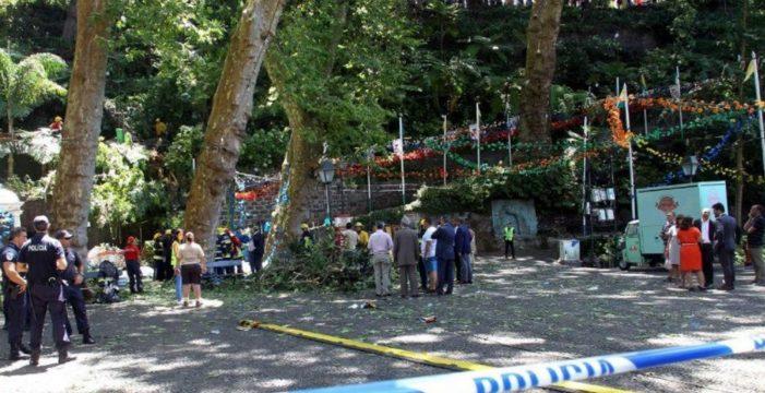 La caída de un árbol deja 13 muertos y 50 heridos en Madeira