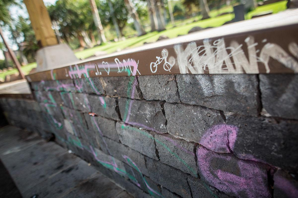 ag - skatepark santa cruz - 02_849