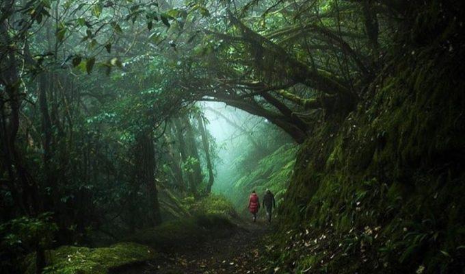 Canarias, un Patrimonio Universal contado en 10 fotos de Instagram