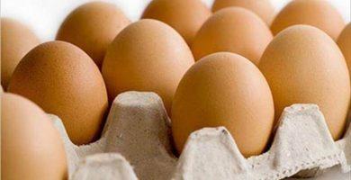 Alerta alimentaria por los huevos contaminados en Europa