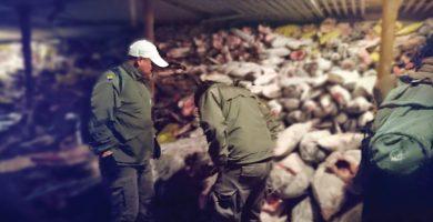 Detenido un barco chino que transportaba especies amenazadas de las Islas Galápagos