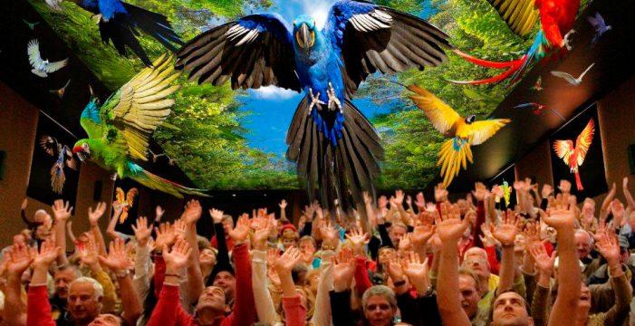 Loro Parque, mejor zoológico del mundo según TripAdvisor