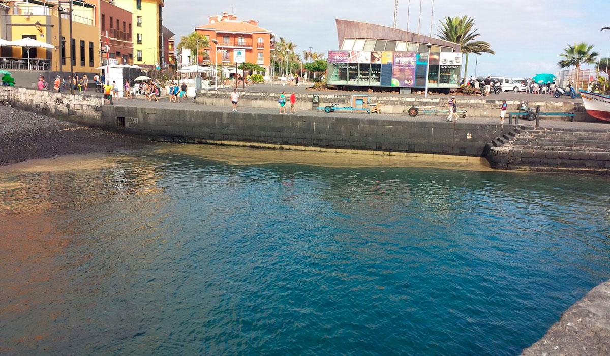 microalgas puerto de la cruz 2