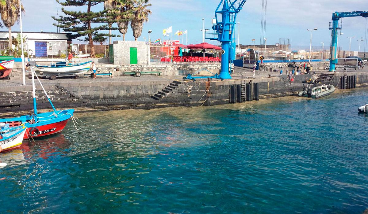 microalgas puerto de la cruz 3