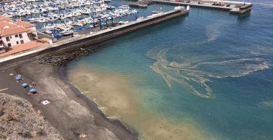 La oposición pide dos comisiones extraordinarias por las 'microalgas'