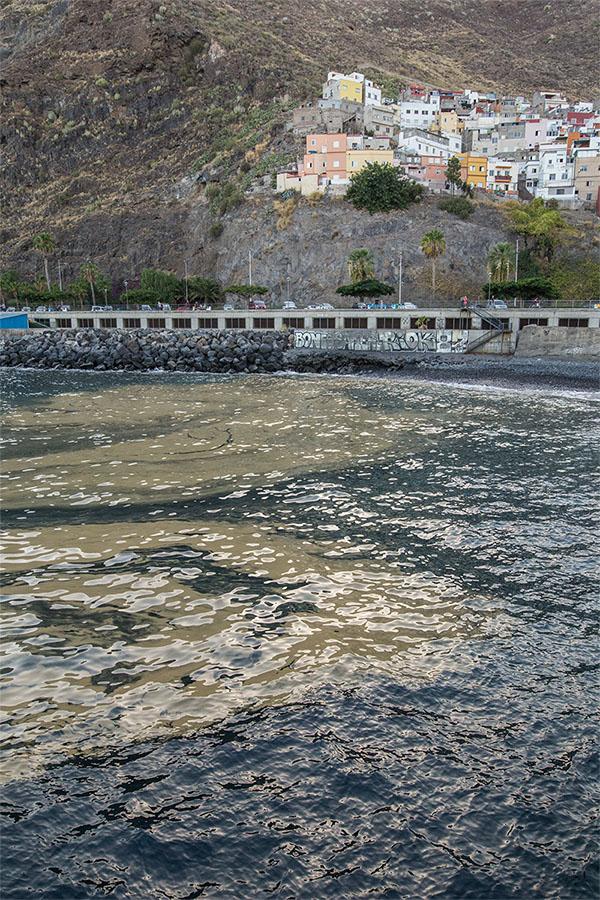 Un banco de microalgas, en el litoral de Santa Cruz de Tenerife. Andrés Gutiérrez