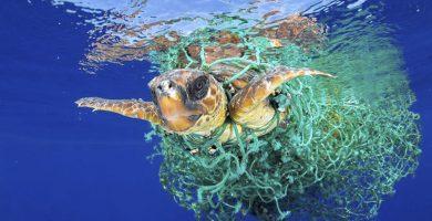 El plástico que contamina los mares se cuela en la sal de mesa canaria