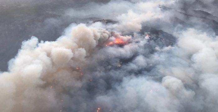 Se reactiva el fuego de Gran Canaria en la zona de Llanos de la Pez