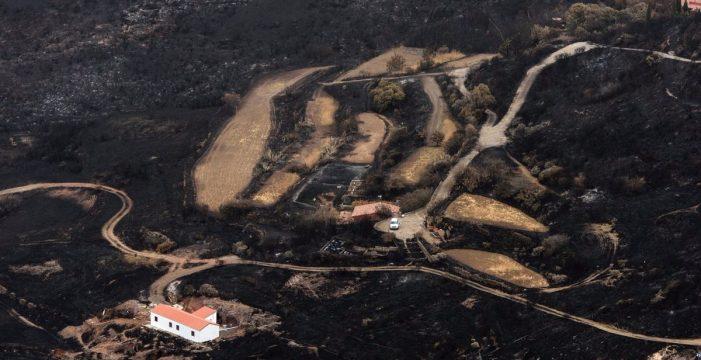 El Gobierno aprueba ayudas para los afectados por el incendio en Gran Canaria
