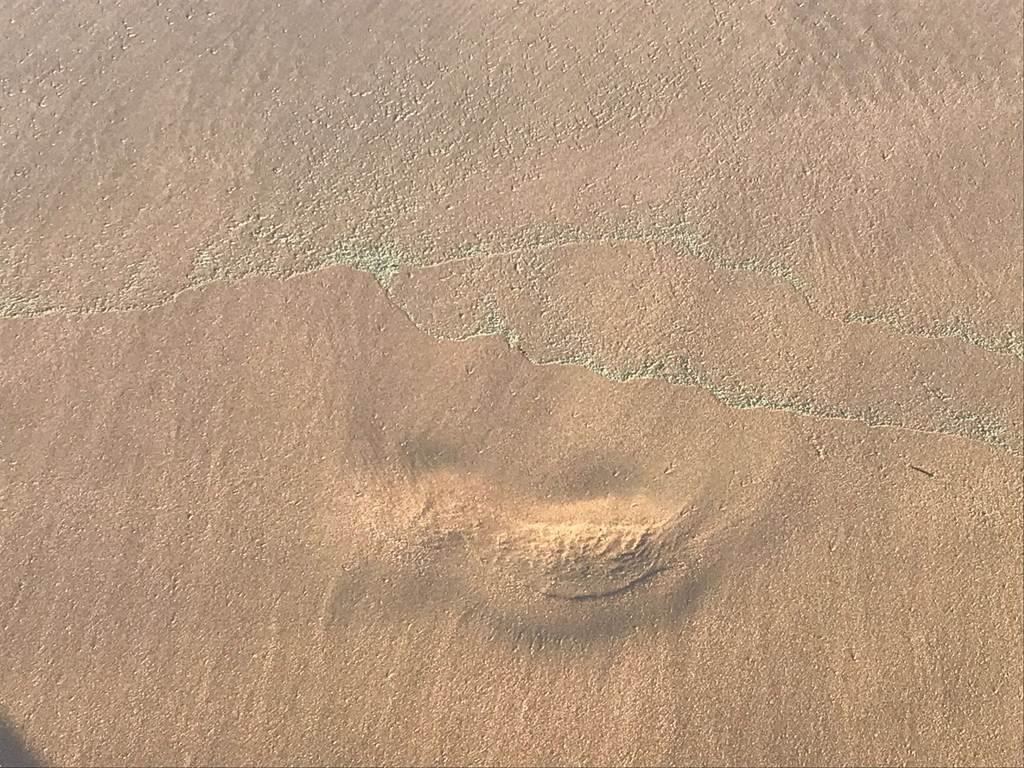 Imagen de las manchas de microalgas en Las Teresitas. | DA