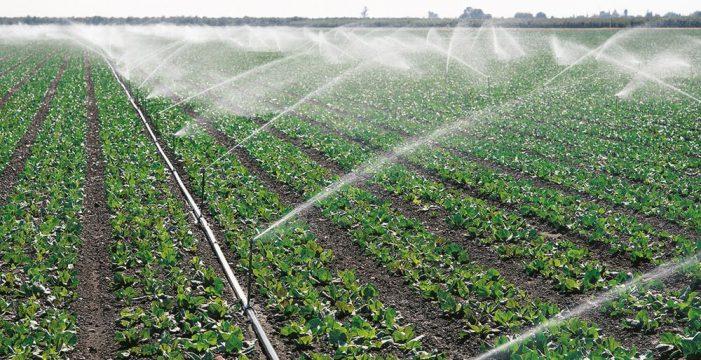 Los ayuntamientos apenas logran reutilizar el 25% de las aguas residuales tratadas