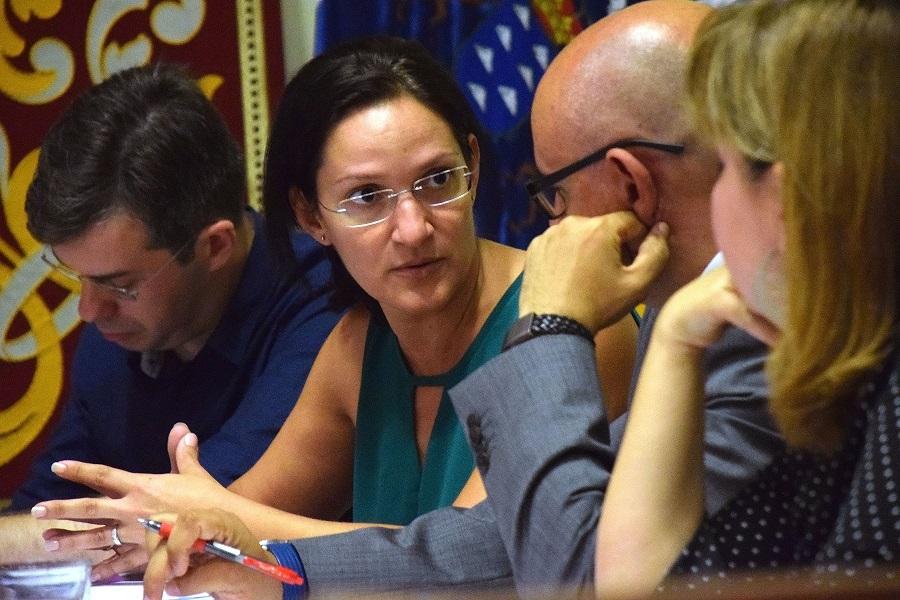 Zaida González durante una comisión de control | DA