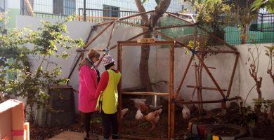 Una de las alumnas mira junto a su monitora los animales del pequeño gallinero. DA