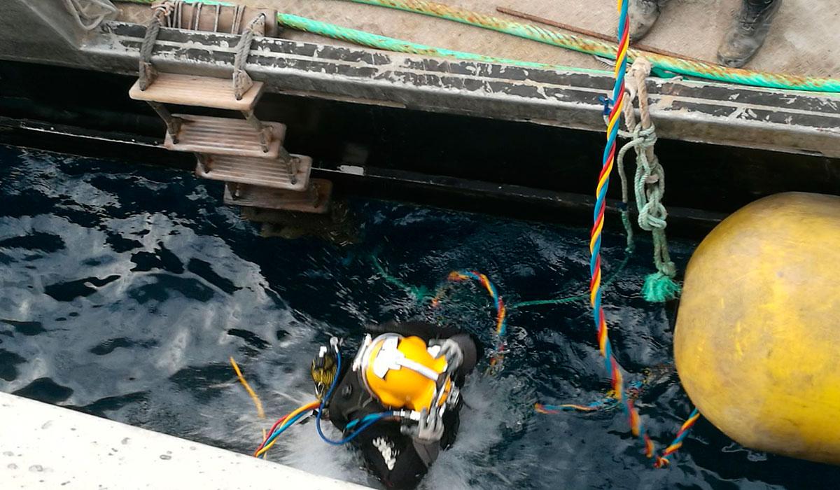 plataformas puerto granadilla 5