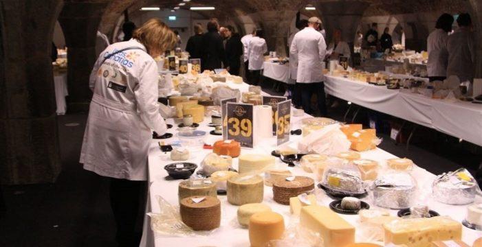 Treinta y seis quesos canarios, entre los mejores del mundo