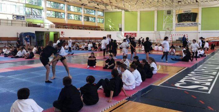 Un total de 115 alumnos de la isla de La Palma disfruta de la lucha canaria