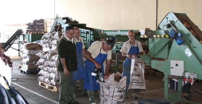 Los almacenes de fruta rechazan la compra de aguacates sin identificar la procedencia