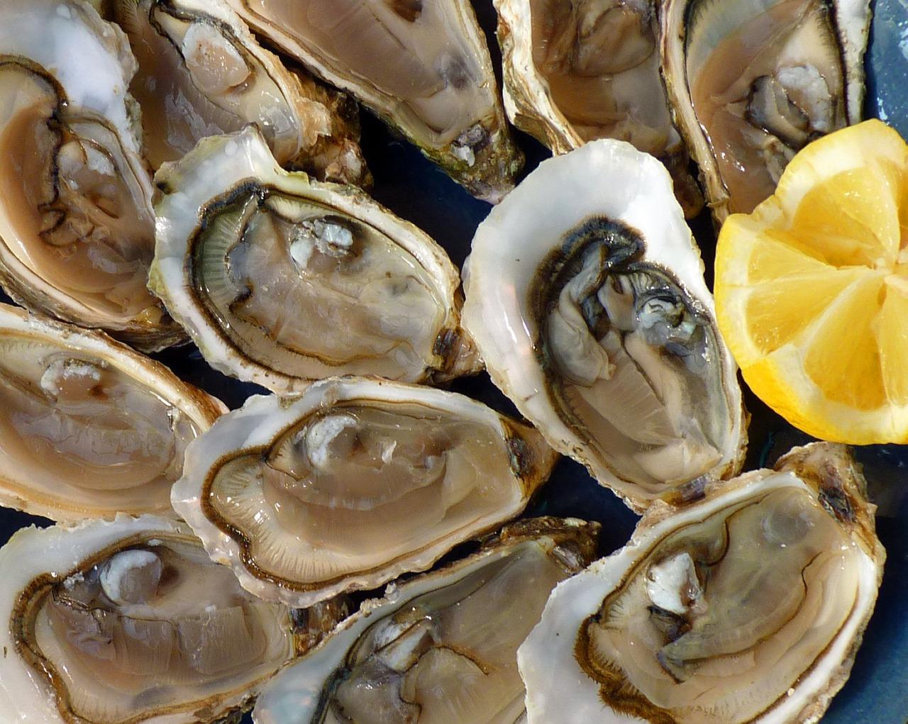 Un plato de ostras crudas. / PIXABAY