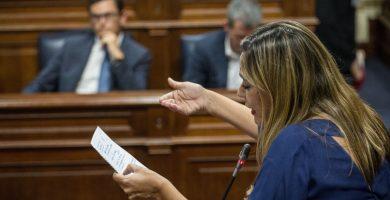 La portavoz del Grupo Parlamentario Socialista, Dolores Corujo, durante un pleno. Andrés Gutiérrez