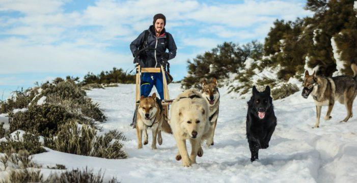 Fabrica su propio trineo para disfrutar de la gran nevada en el Teide