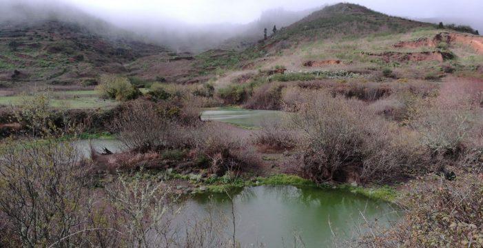 Las charcas de Erjos recuperan un 30% de agua gracias a la lluvia