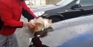 El hombre, usando el gato para limpiar su coche. / METRO