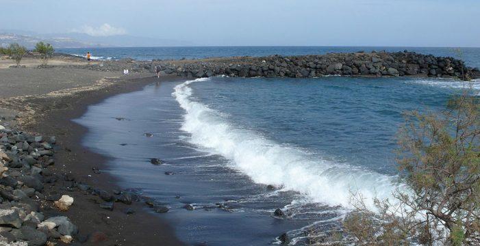 Aves sin cabeza en la iglesia y en la playa: nuevo caso de ritos de santería en Tenerife