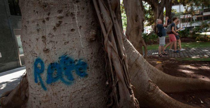 Reclaman una intervención urgente para los árboles de la plaza San Francisco