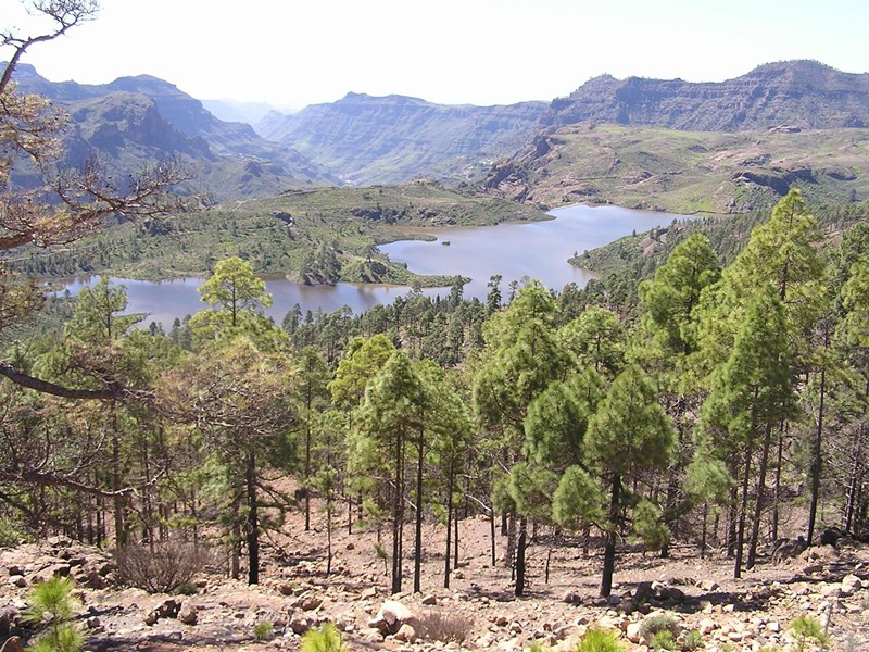 Reserva de agua en Gran Canaria. / EP