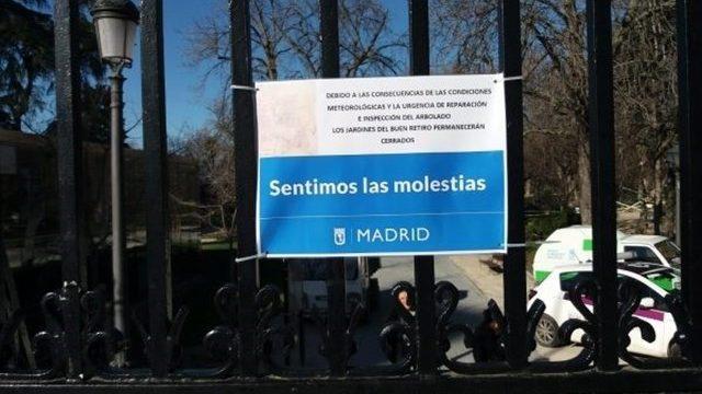 Cuarta víctima mortal en Madrid en cuatro años por caída de un árbol o ramas