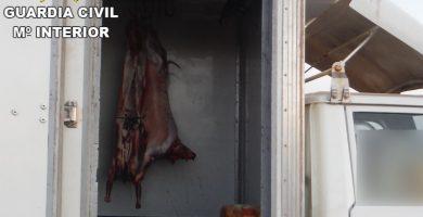 Inmovilizan en Fuerteventura carne para el consumo humano transportada en un camión junto a productos de limpieza
