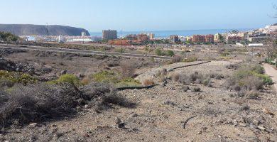 Los terrenos del Mojón, en Arona, se extienden desde el Hospital del Sur, por encima de la autopista, hasta el núcleo de Los Cristianos. J. C. M.