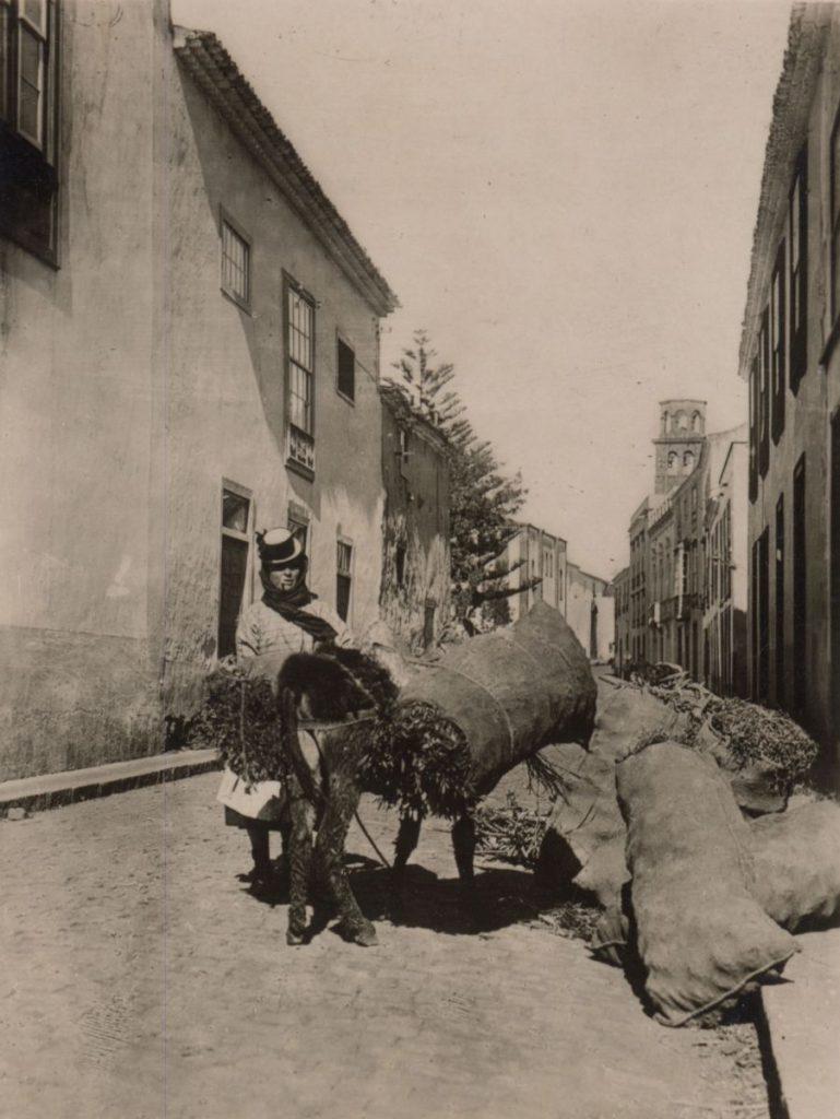 Campesina en La Laguna, año 1934. | Foto: Fedac