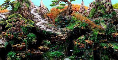 El nuevo Jardín Zen del Loro Parque abrirá sus puertas al público el día 1 de junio.