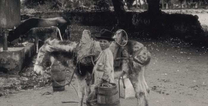 La historia de La Laguna a través del camposanto de San Juan