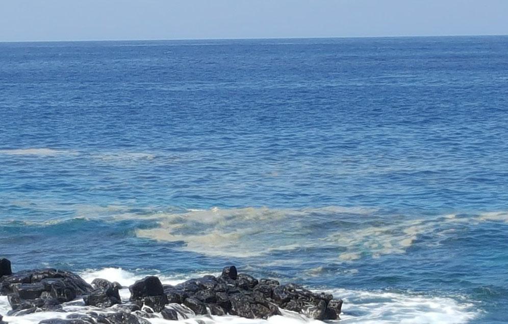 Mancha formada por microalgas, el verano pasado, en la costa de Las Galletas, en el municipio de Arona. DA
