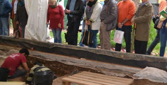 Hallan restos óseos junto a la Catedral de La Laguna que podrían datar del s. XVI