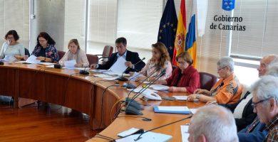 La consejera Cristina Valido, con el Consejo de Mayores. DA