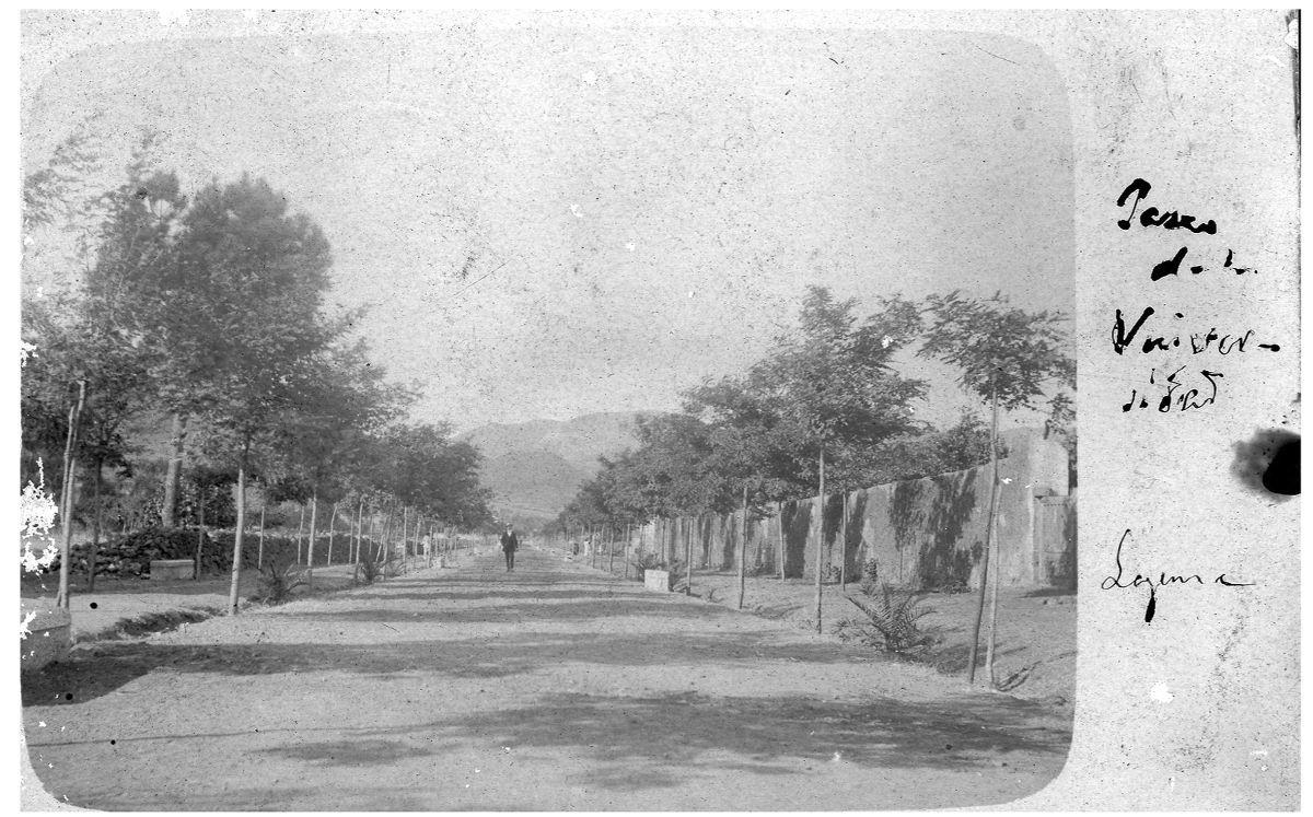 Probablemente, la foto más antigua del camino, del Centro de Fotografía Isla de Tenerife. Foto Cedida