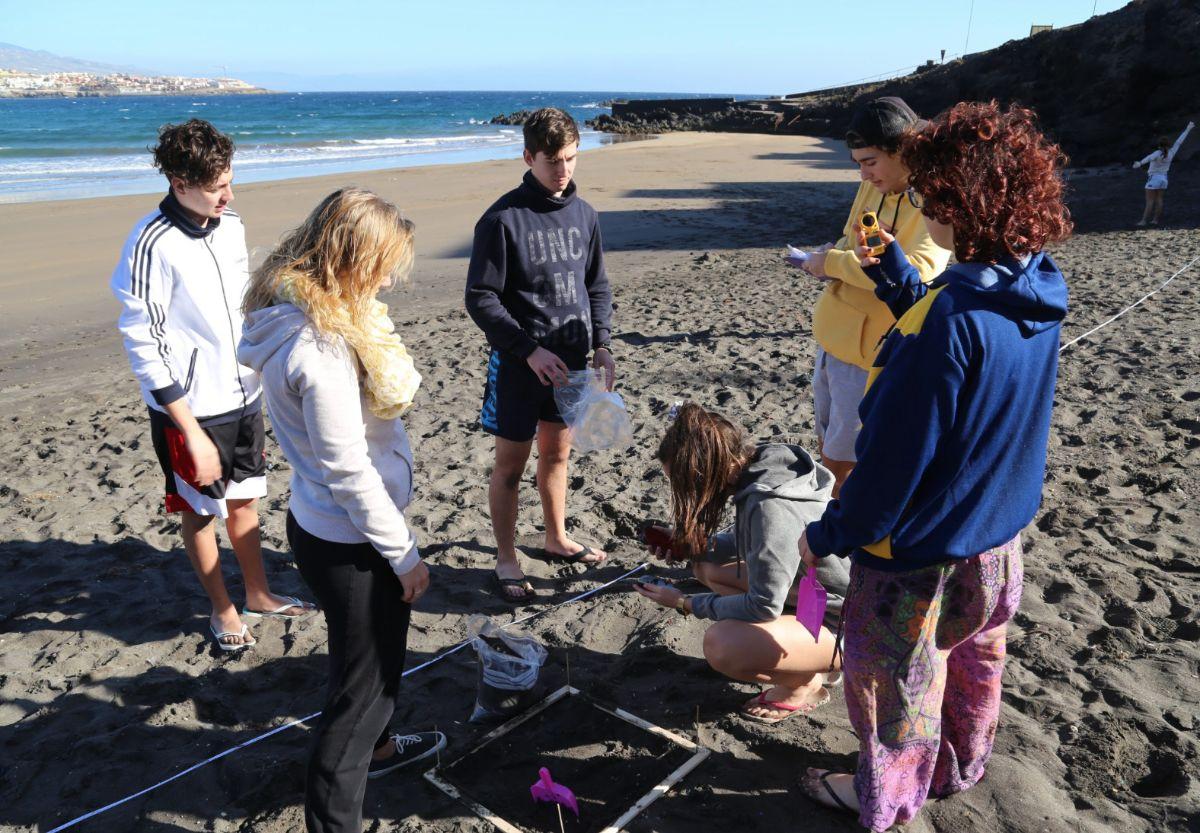 Estudiantes del IES Los Cristianos examinan algunos restos localizados en El Porís de Abona. DA