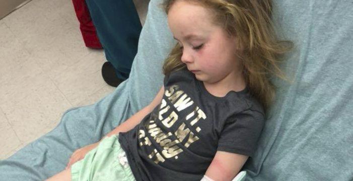 La picadura de una garrapata paraliza el cuerpo de una niña de 5 años