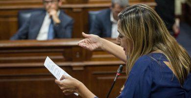 La portavoz del PSOE en el Parlamento de Canarias, Dolores Corujo, interviene en un pleno. Andrés Gutiérrez
