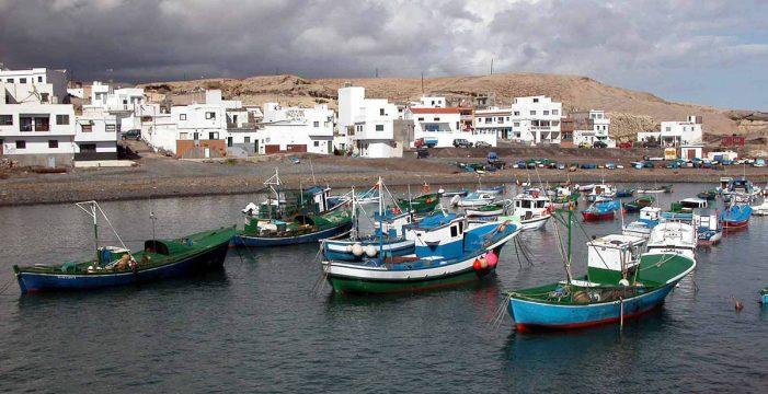 """En Arico """"habrá un problema de salud pública si no se separan los desechos de pescado"""""""