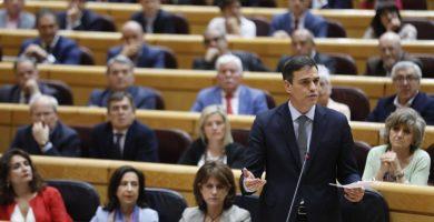 Pedro Sánchez en su primera sesión de control al Gobierno en el Senado. | EP