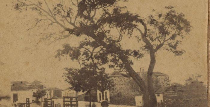 Así sembraron los laureles aridanenses en 1863