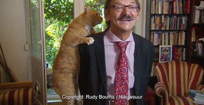 Su gato interrumpe su entrevista en televisión y se convierte en la estrella