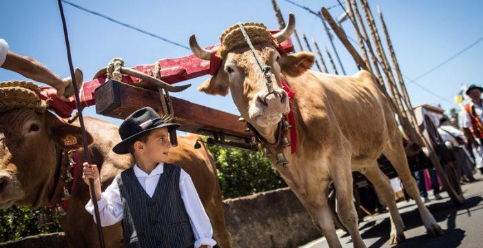 Los ganaderos y buayeros avalan el bienestar de sus animales