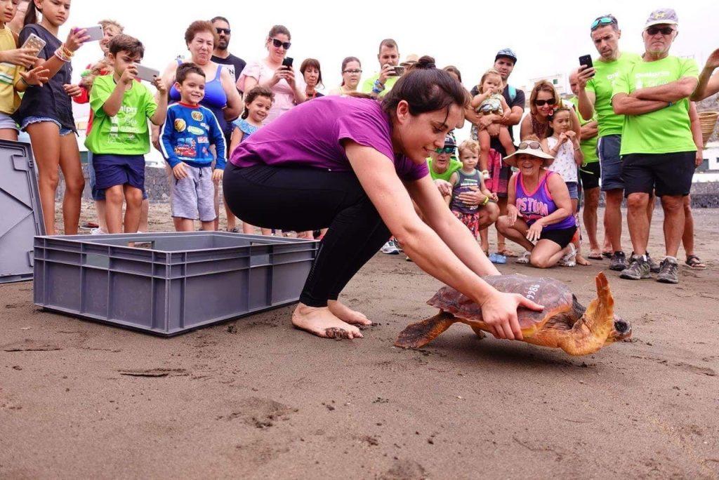 En el marco de la celebración de la prueba, se ha soltado al mar una tortuga. | Foto: Javier Durán